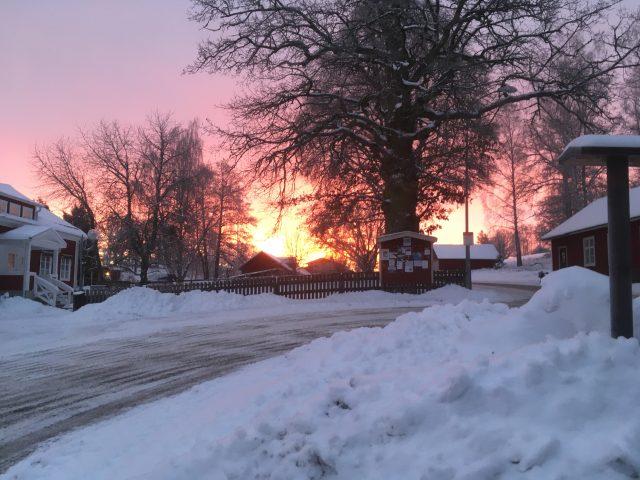 Vilken härlig vinter vi har haft!